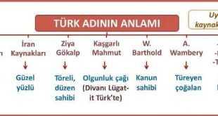 Türk Adının Anlamı ve Kökeni Özet
