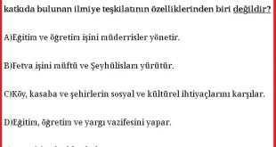 Beylikten Devlete Osmanlı Medeniyeti Test Soruları 2